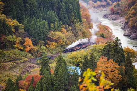 stream train with colorful autumn view in japan Stock Photo