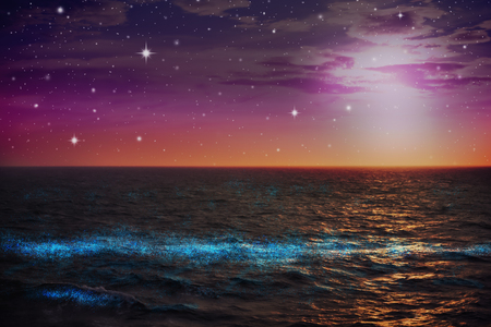 imagination phytoplankton glowing in sea at night with colorful sky