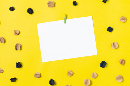 note paper and dried flowers on yellow background