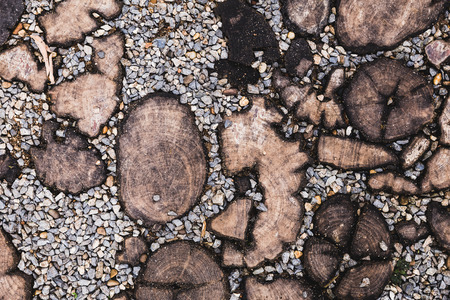texture of wood and pebble ground 写真素材