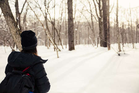 back of woman tourist looking at pine tree in winter
