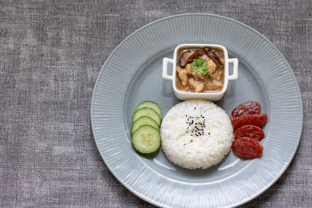 top view rice with chicken gravy ready to eat Banco de Imagens