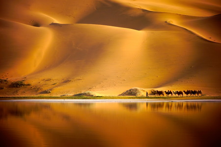 east riding: Desert caravans