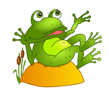 zoo amphibian: cartoon frog lying on a rock.