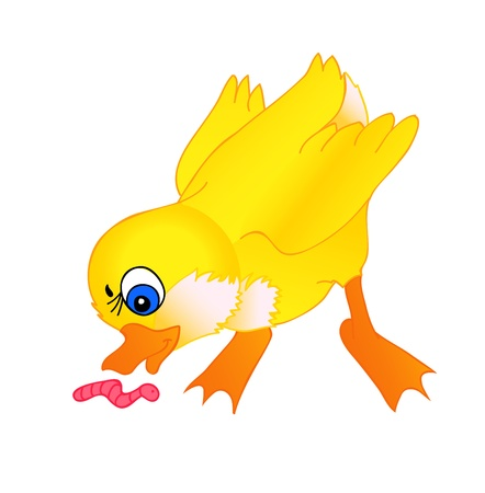 daffodils: little duckling cartoon with isolation on a white background Illustration