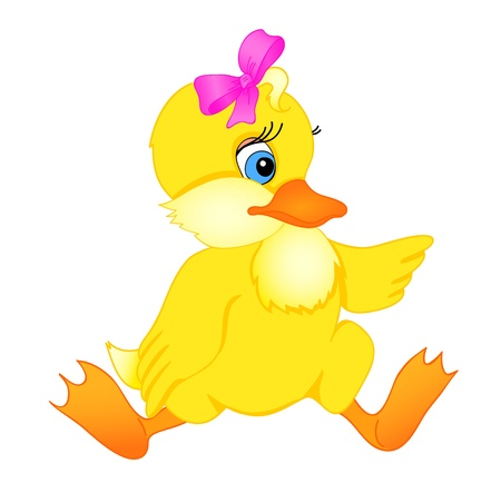 ducklings: little duckling cartoon with isolation on a white background Illustration