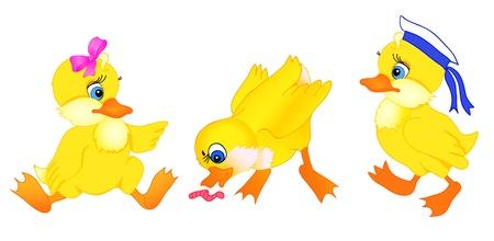 Ensemble de petite bande dessinée de canard à l'isolement sur un fond blanc Banque d'images - 16100182