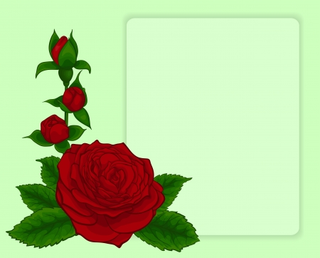 bouquet of red roses. design frame with floral pattern. Vector