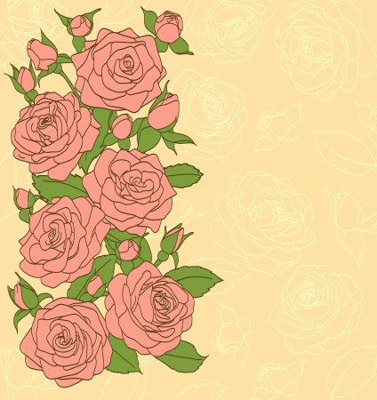 flowers, leaves and buds of pink roses  Painted in the old style  Suitable background for text and postcards Vector