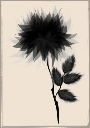 a beautiful black flower, surrounded by vintage frame Stock Vector - 17665933