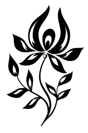Isolé fleur noir et blanc Banque d'images - 17665939