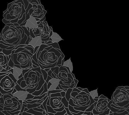 Outline of roses on a black background Stock Vector - 17667051