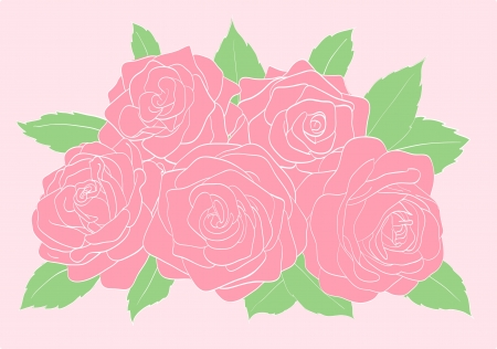 pinkroses with green leaves close-up Vector