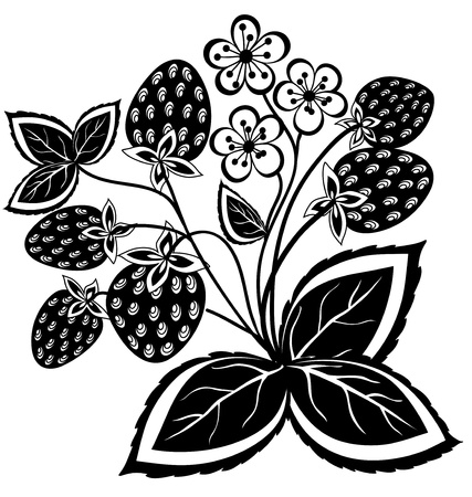 black and white abstract strawberry, flower with leaves and swirls isolated on white background Stock Vector - 17832850