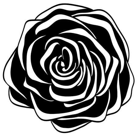 abstract black and white rose. Many similarities to the author's profile Vector