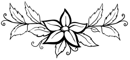 single line: Beautiful black and white abstract flower. With leaves and flourishes. Isolated on white. Many similarities to the authors profile