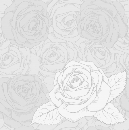 White rose on a gray seamless background  Many similarities to the author Stock Vector - 19242479
