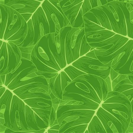 Fond transparent feuilles vertes avec un monstre décrivent de nombreuses similitudes avec l'auteur Banque d'images - 19242476