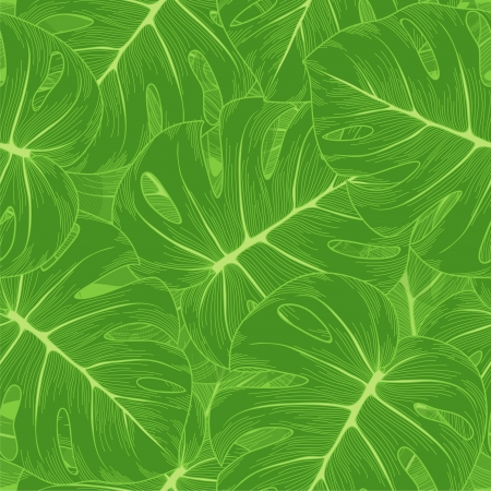 monstera: seamless background  Green leaves with a monster outline  Many similarities to the author