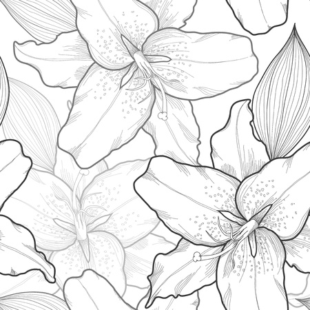 beautiful seamless black-and-white background with lilies, hand-drawn   Vector