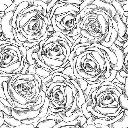 Black and white seamless background. Roses hand-drawn. Vector
