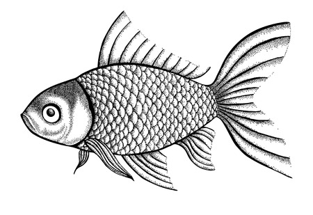 pens: figure fish painted in a graphic style points and lines. A great figure for a tattoo
