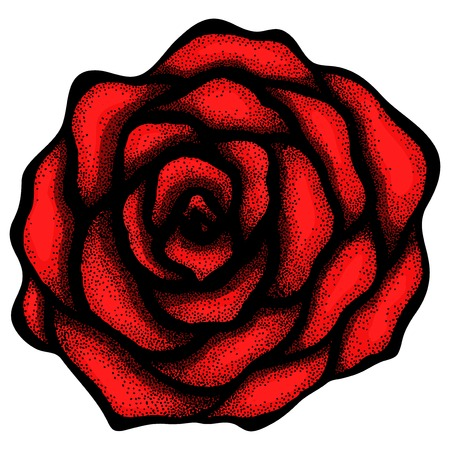 abstract rose free-hand drawing in a graphic style points and lines. Can be used for drawing tattoo Stock Vector - 24167881