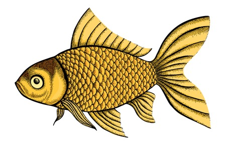 swimming carp: figure fish painted in a graphic style points and lines. A great figure for a tattoo