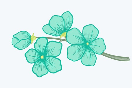 Beautiful blooming branch, a symbol of spring Vector
