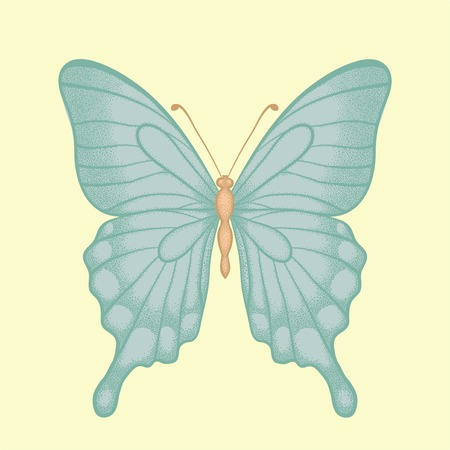 beautiful butterfly  in a hand-drawn graphic style in vintage colors Vector