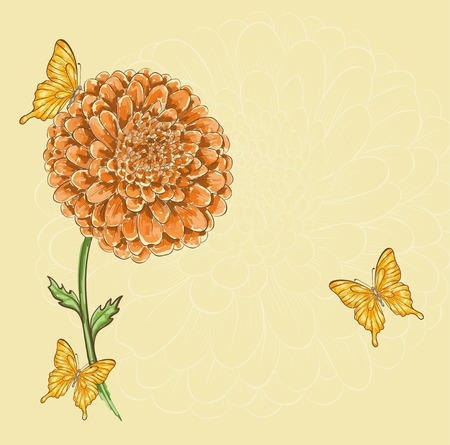 Beautiful chrysanthemum flower with flying butterflies. Hand-drawn contour lines and strokes. Perfect for background greeting cards and invitations to the day of the wedding, birthday and Valentines Day Vector