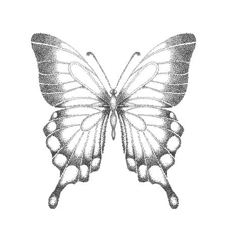 graphic black and white butterfly. Hand-drawn contour lines and strokes. one isolated on white Illustration