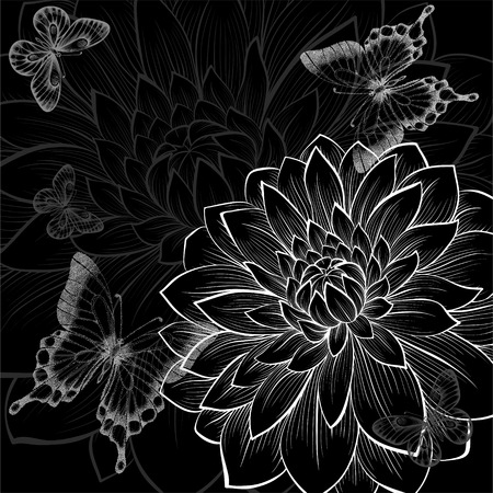 beautiful monochrome black and white background with dahlias and butterflies. Hand-drawn contour lines and strokes. Vector