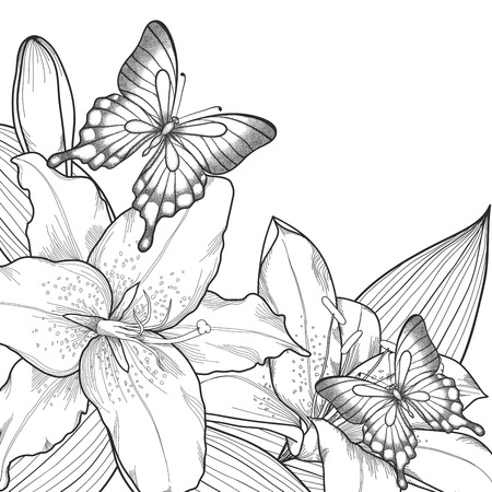 beautiful background for greeting card with monochrome black and white lilies and butterflies. Hand-drawn contour lines and strokes Vector