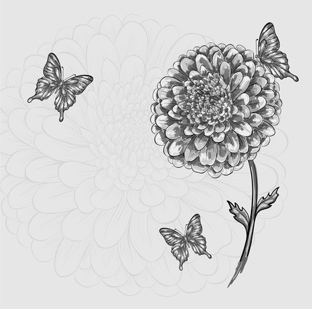 beautiful black-and-white flower with butterflies. Hand-drawn contour lines and strokes. Perfect for background greeting cards and invitations to the day of the wedding, birthday and Valentines Day Vector