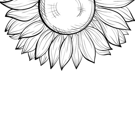 sunflower drawing: beautiful monochrome black and white with a floral border of sunflower.