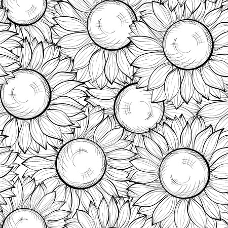 beautiful black and white seamless with sunflowers.  Vector