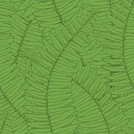 Beautiful seamless with fern leaves Vector