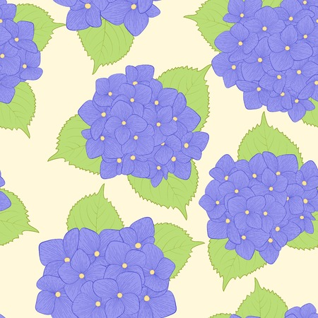 Beautiful seamless background with  flower hydrangea .  Vector