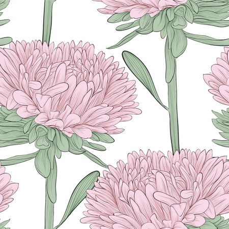 Beautiful seamless background with pink flowers aster on a white background.