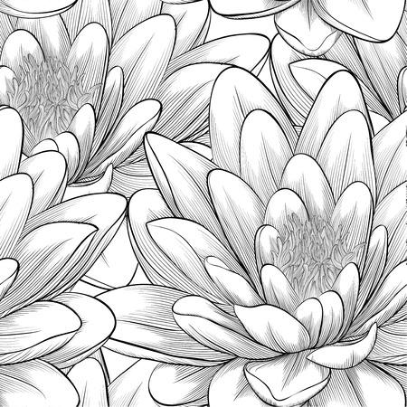 ロータスと美しいモノクロ、黒と白のシームレスなパターンの花の手で描かれた輪郭線と背景のグリーティング カードや招待状、結婚式のための完