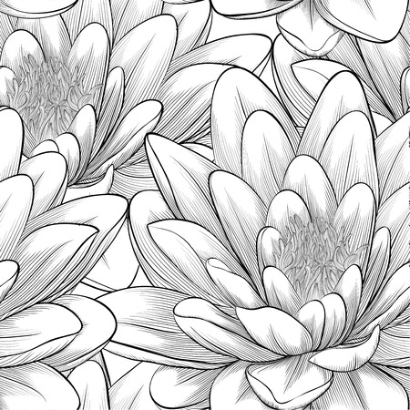 waterlily: Beautiful monochrome, black and white seamless pattern with lotus flowers  Hand-drawn contour lines and strokes  Perfect for background greeting cards and invitations of the wedding, birthday Illustration
