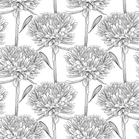 Belle monochrome, en noir et blanc sans soudure de fond avec des fleurs aster lignes et traits de contour dessinées à la main parfait pour le fond des cartes de voeux et invitations de mariage, d'anniversaire Banque d'images - 27375684