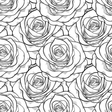 flower art: bellissimo bianco e nero seamless in rosa con contorni linee di contorno disegnati a mano e colpi sfondo perfetto per biglietti di auguri e inviti del matrimonio, compleanno, San Valentino s Vettoriali