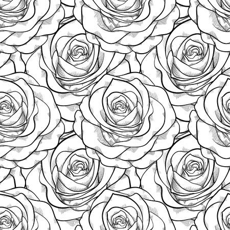 róża: Piękne czarno-biały bez szwu deseń w róże z konturów Ręcznie rysowane konturem i udarów idealne na tle kart okolicznościowych i zaproszeń na ślub, urodziny, Walentynki s Ilustracja