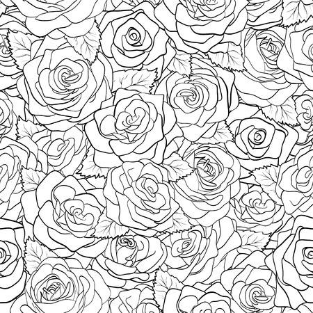 beautiful black and white seamless pattern in roses with contours  Hand-drawn contour lines and strokes  Perfect for background greeting cards and invitations of the wedding, birthday, Valentine