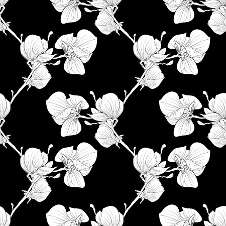 magnolia tree: Beautiful monochrome, black and white seamless background with blooming magnolia tree branches. Illustration