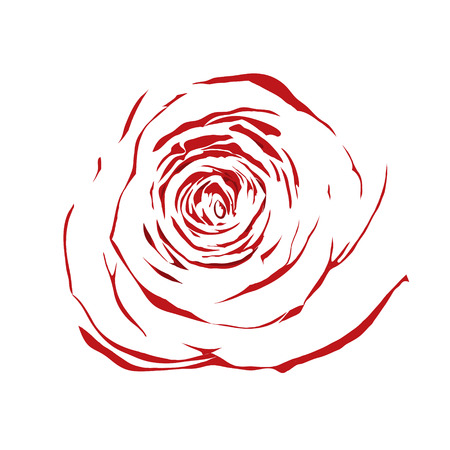 beautiful abstract sketch red rose with the effect of a watercolor drawing isolated on white background. Illustration