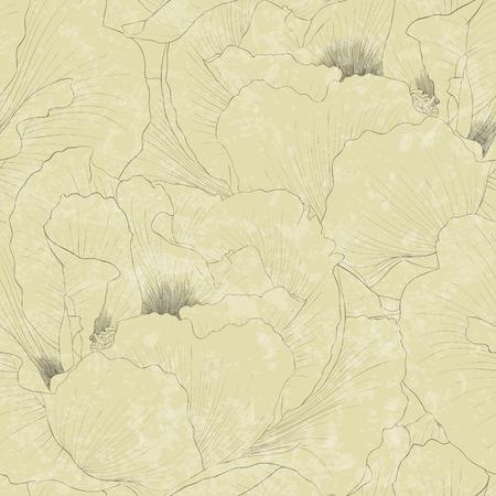 peony tree: Bellissimo sfondo trasparente con fiori pianta Paeonia arborea (Albero peonia). Curve di livello e tratti disegnati a mano. Vettoriali