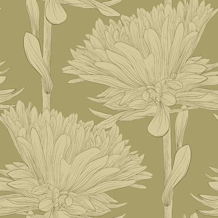 aster: Beautiful monochrome, seamless background with flowers aster. Hand-drawn contour lines and strokes.